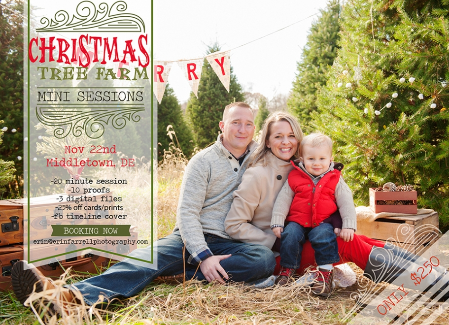 Christmas Tree Farm Mini Sessions.Erin Farrell Photography Delaware Wedding Newborn Baby